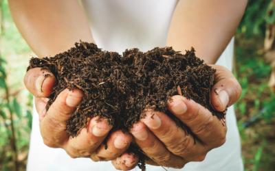 Petit manuel pour un compost parfait (ou comment devenir maître composteur)